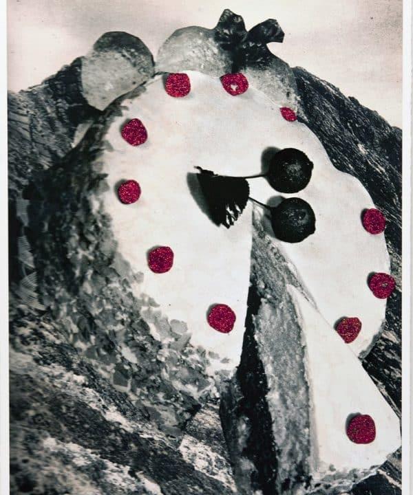A Chir by David Ferry