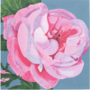A Rose is a Rose is a Rose by Sir Peter Blake