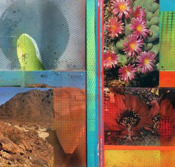 'Cacti Garden 3' by David Ferry