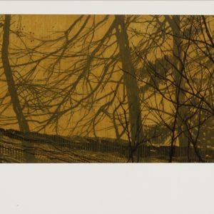 Field Edge 6 by Andrew Mackenzie