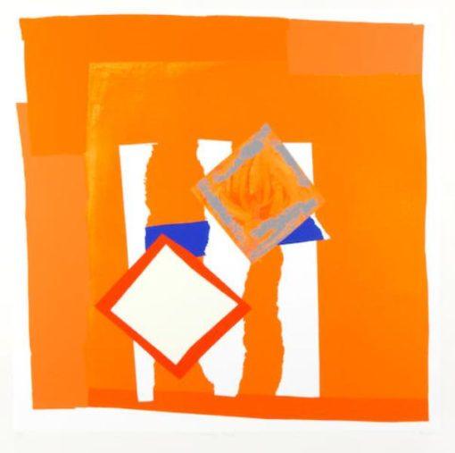 Orange Field by Sandra Blow
