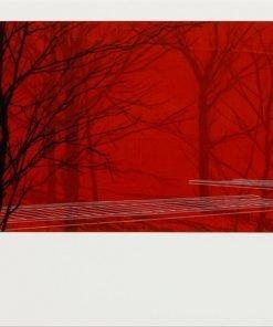 Red Boardwalk 2
