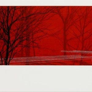 Red Boardwalk 2 by Andrew Mackenzie